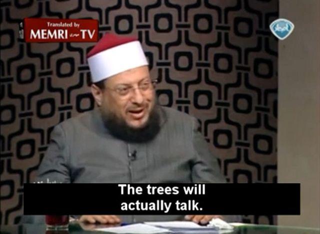 treeswilltalk